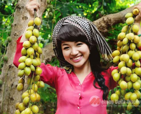 Picking fruit at Mekong garden - Mekong delta tour